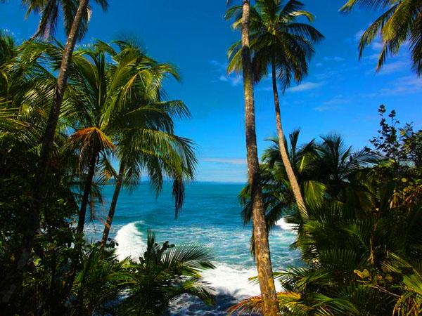 Backpacken durch Costa Rica | Informationen und Tipps