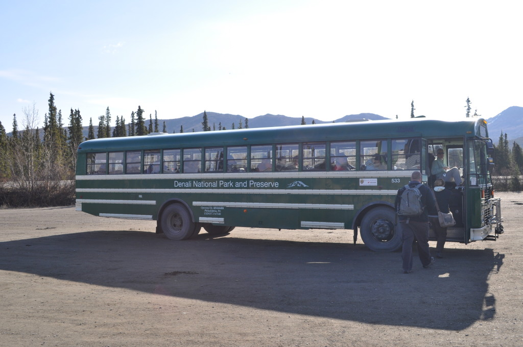 denali nationalpark bus alaska