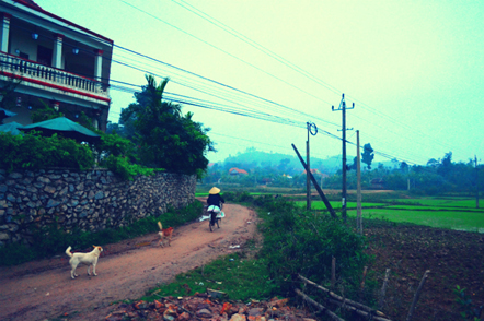 Phong Nha Ke Bang