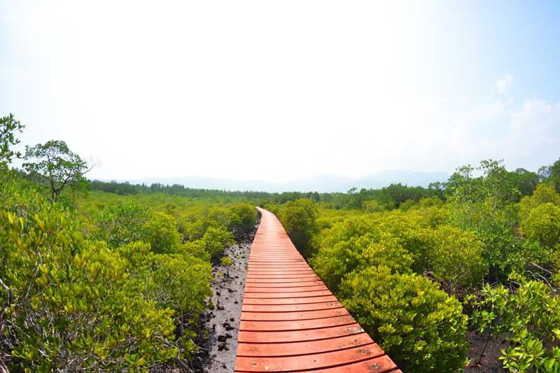 Mangroven-Hideaway-ostküste-koh-chang