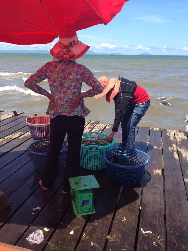kep fischer kambodscha