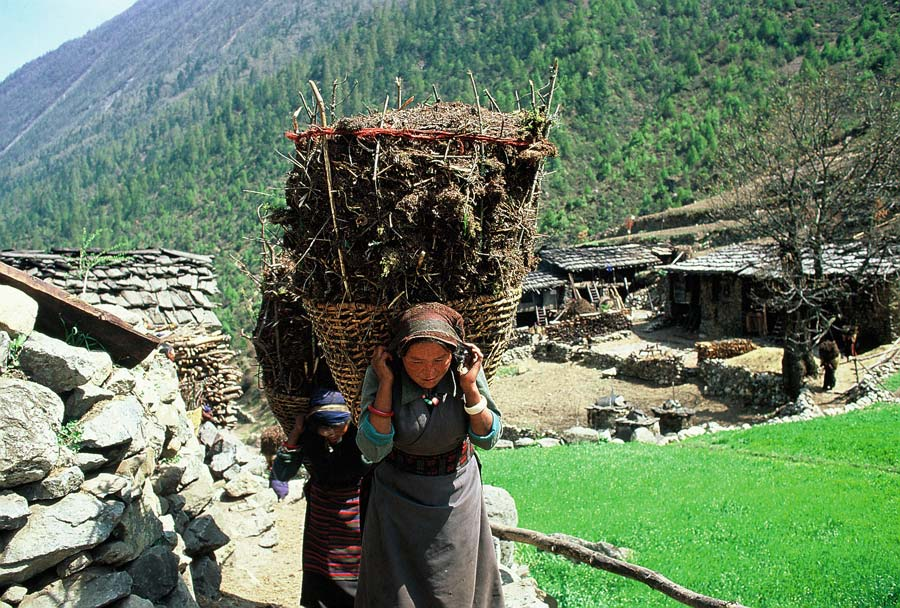 trägerin-frau-nepal
