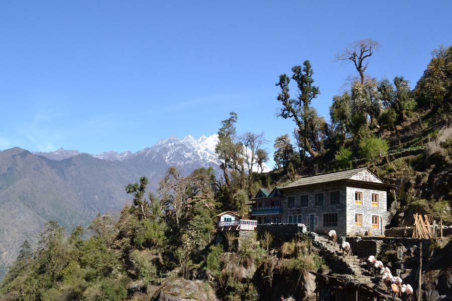 nepal-tour-2016-losso