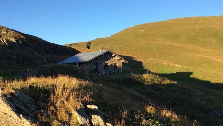 Alp Sommer 2016