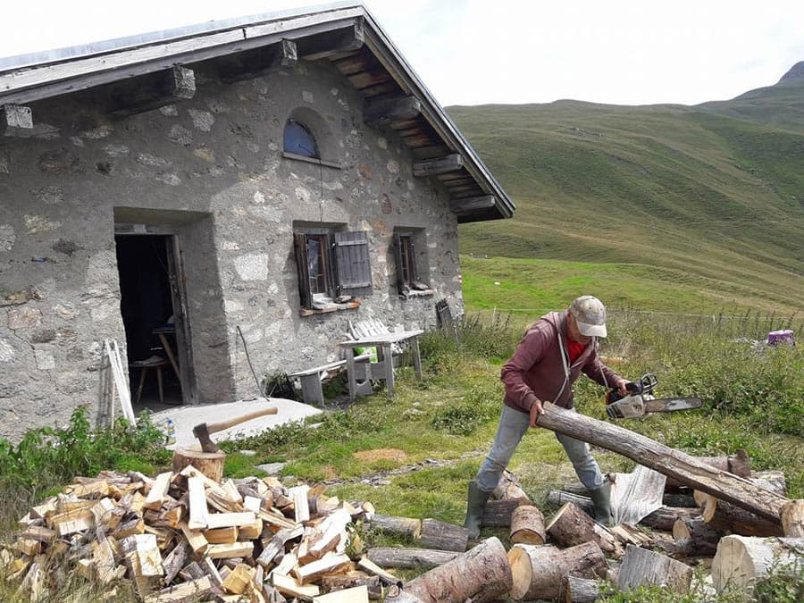 sommer-alm-holz