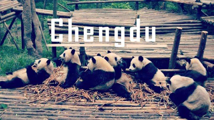 Chengdu in China: Pandas, hot Weather, hot Food and hot Girls!
