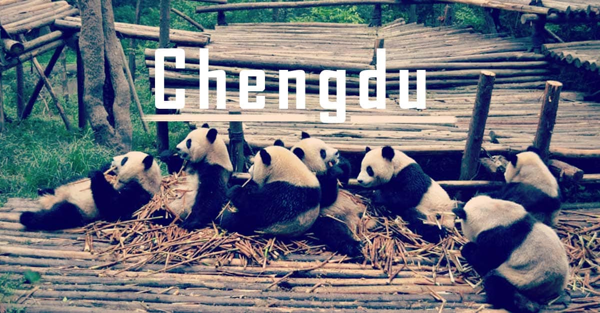 Chengdu in China: Pandas, hot Weather, hot Food and hot Girls!