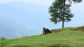 nagarkot-dorf-nepal-kathmandu