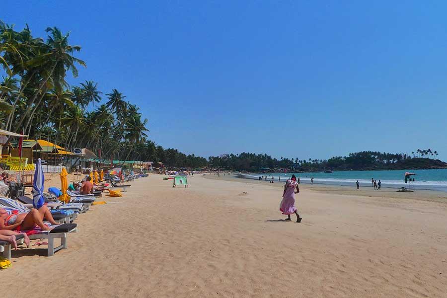 indien-goa-Palolem-strand-beach-blog-palmen